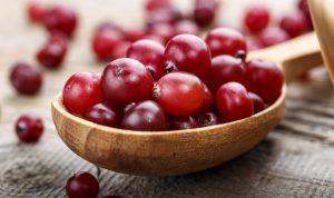 Upper-Mt-Gravatt-dentist-fresh-cranberries